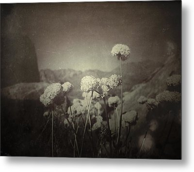 Together  Metal Print by Mark Ross