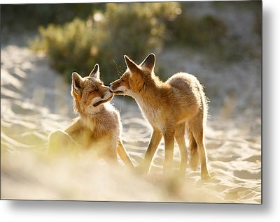 Togetherness - Mother And Kit Moment Metal Print