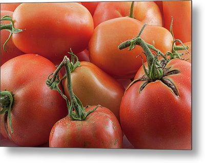 Metal Print featuring the photograph Tomato Stems by James BO Insogna