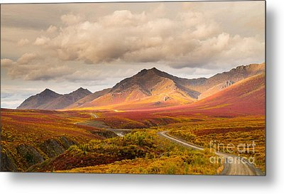 Tombstone Territorial Park Yukon Metal Print by Rod Jellison