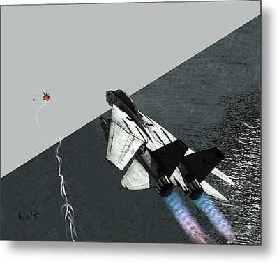 Tomcat Kill Metal Print