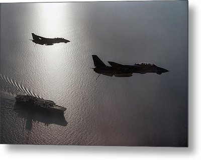 Metal Print featuring the photograph Tomcat Silhouette  by Peter Chilelli
