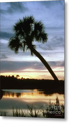 Tomoka River Sunset Metal Print by Dodie Ulery