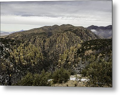 Toothpicks Metal Print by Bill Cantey