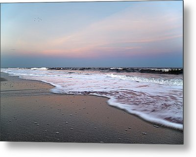 Topsail Dome-esticated Evening Metal Print