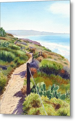 Torrey Pines Guy Fleming Trail Metal Print by Mary Helmreich