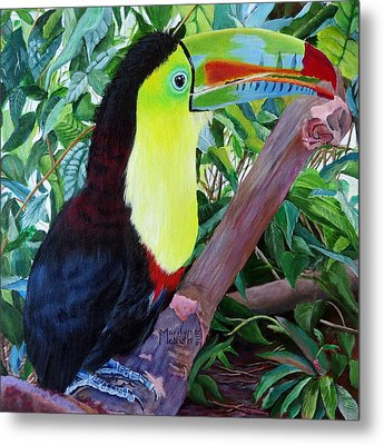 Toucan Portrait 2 Metal Print by Marilyn McNish