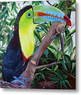 Toucan Portrait Metal Print