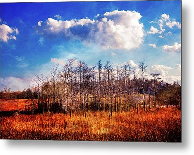 Metal Print featuring the photograph Touch Of Autumn In The Glades by Debra and Dave Vanderlaan