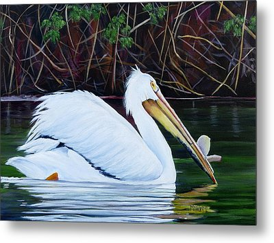 Touring Pelican Metal Print by Marilyn McNish