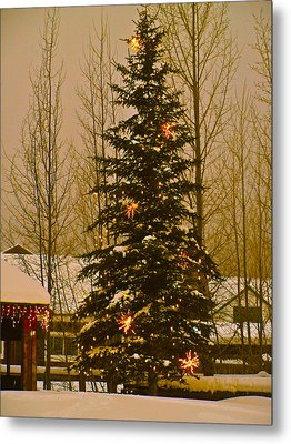Town Tree Metal Print by Bob Berwyn