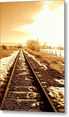 Tracks Metal Print by Caroline Clark