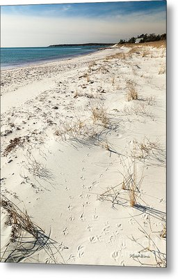 Metal Print featuring the photograph Tracks On The Beach by Michelle Wiarda