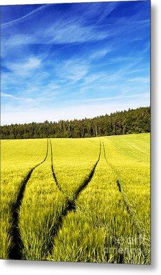 Tractor Tracks In Wheat Field Metal Print by Carsten Reisinger
