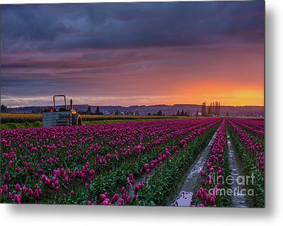 Metal Print featuring the photograph Tractor Waits For Morning by Mike Reid