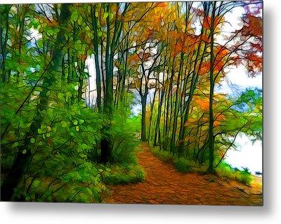 Trail Around The Pond Metal Print by Lilia D