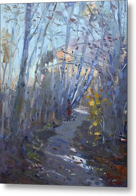 Trail In Silver Creek Valley Metal Print by Ylli Haruni