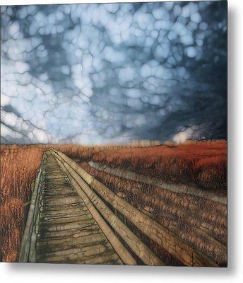 Trail Series 4 Metal Print