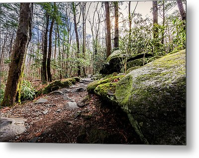 Trail To Rainbow Falls Metal Print by Everet Regal