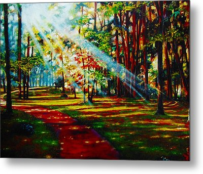 Trails Of Light Metal Print by Emery Franklin