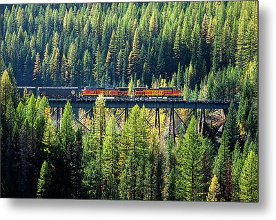 Train Coming Through Metal Print