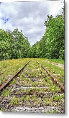 Train Tracks And Wildflowers Metal Print by Edward Fielding