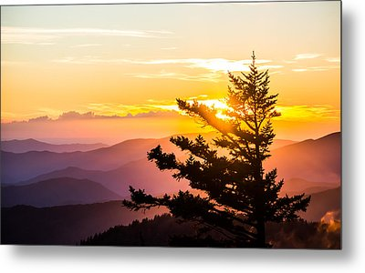 Tranquil Colors Metal Print by Shelby Young