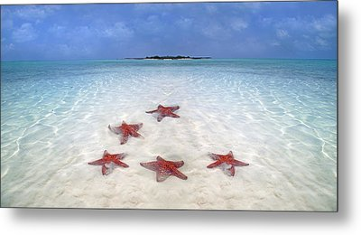 Tranquil Inspiration  Metal Print by Betsy Knapp