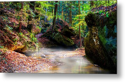 Metal Print featuring the photograph Tranquil Mist by David Morefield