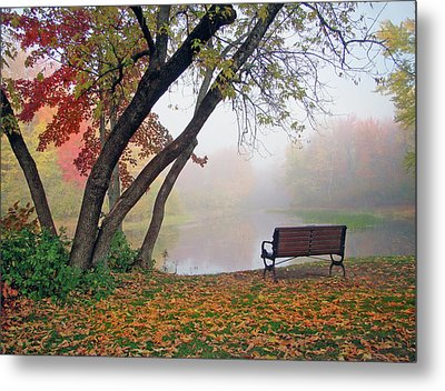 Tranquil View Metal Print by Betsy Zimmerli