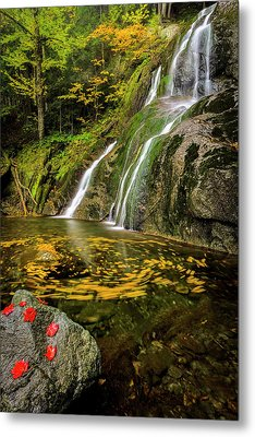Metal Print featuring the photograph Tranquil Waters by Mike Lang