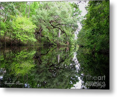 Metal Print featuring the photograph Tranquility by Barbara Bowen