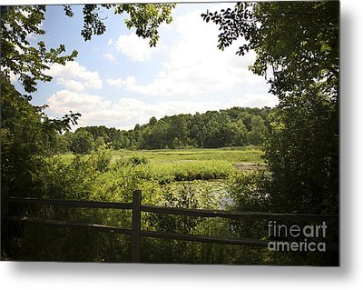 Tranquility Metal Print by Jeannie Burleson