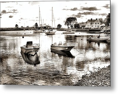 Tranquility Metal Print by Laura DAddona