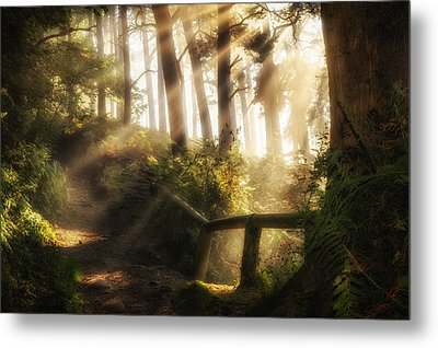 Tranquility Metal Print by Peter Acs