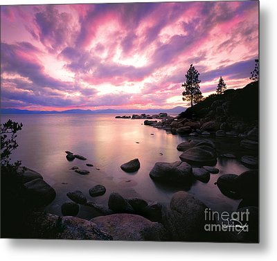 Tranquility  Metal Print by Vance Fox
