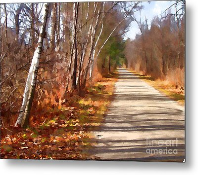 Metal Print featuring the photograph Transformed by Betsy Zimmerli