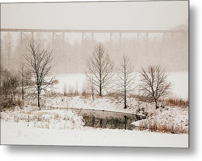 Transformed Metal Print by Cheryl Helms