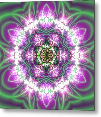Transition Flower 6 Beats 3 Metal Print