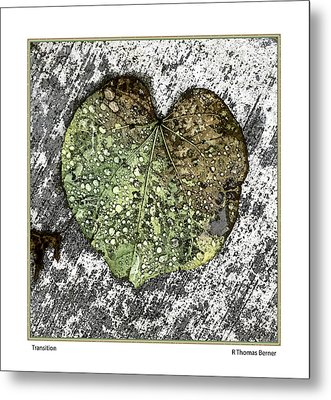 Transition Metal Print by R Thomas Berner