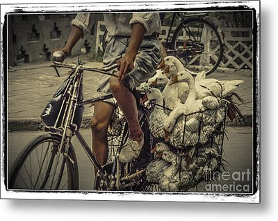 Transport By Bicycle In China Metal Print by Heiko Koehrer-Wagner