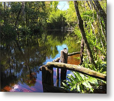 Trapper Nelson Dock Metal Print by Carey Chen