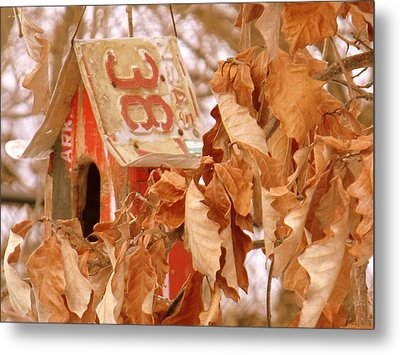 Traveling Bird House Metal Print by Ed Smith