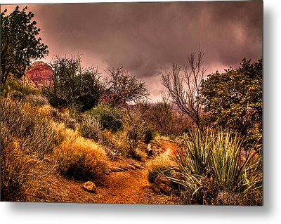 Traveling The Trail At Red Rocks Canyon Metal Print by David Patterson