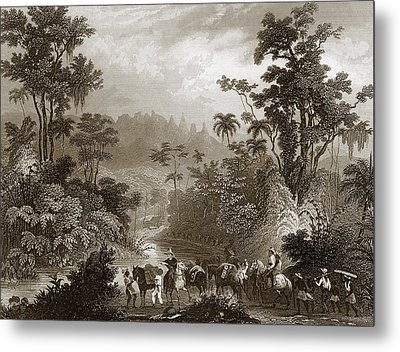 Travels In Brazil Metal Print