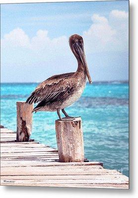 Treasure Coast Pelican Pier Seascape C1 Metal Print by Ricardos Creations