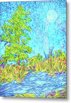 Metal Print featuring the digital art Tree Aglow In Moonlight - Mountain Scene In Boulder County Colorado by Joel Bruce Wallach