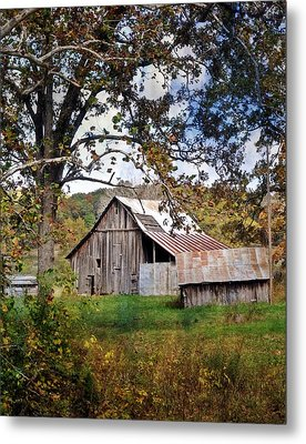 Tree And Barn Metal Print by Marty Koch