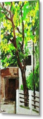 Tree And Shade Metal Print by Usha Shantharam