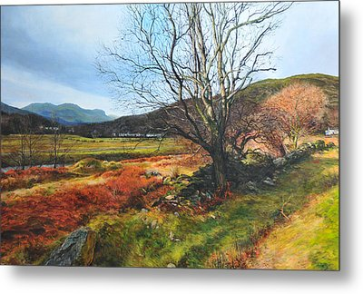 Tree At Aberglaslyn Metal Print by Harry Robertson